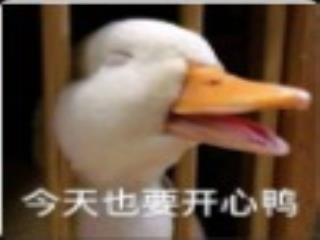 春田花花农场